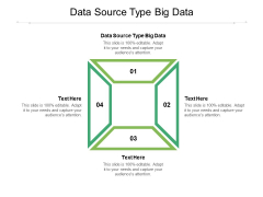 Data Source Type Big Data Ppt PowerPoint Presentation Gallery Layouts Cpb Pdf