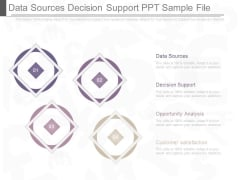 Data Sources Decision Support Ppt Sample File