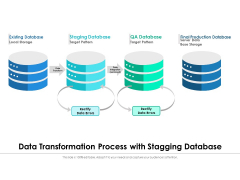 Data Transformation Process With Stagging Database Ppt PowerPoint Presentation File Visual Aids PDF