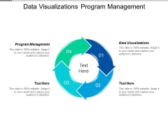 Data Visualizations Program Management Ppt PowerPoint Presentation Gallery Styles