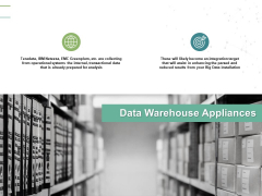 Data Warehouse Appliances Globe Ppt PowerPoint Presentation Gallery Styles