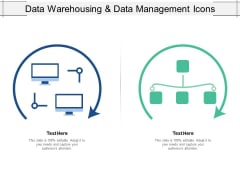 Data Warehousing And Data Management Icons Ppt PowerPoint Presentation Styles Graphics