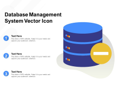 Database Management System Vector Icon Ppt File Graphics Template PDF