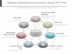 Database Marketing And Techniques Sample Ppt Files