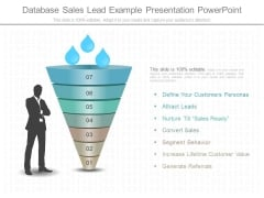 Database Sales Lead Example Presentation Powerpoint