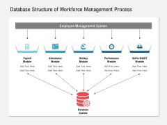 Database Structure Of Workforce Management Process Ppt PowerPoint Presentation Ideas Show PDF