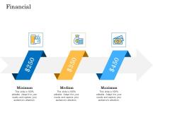 Deal Assessment Audit Process Financial Information PDF