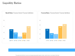 Deal Assessment Audit Process Liquidity Ratios Clipart PDF
