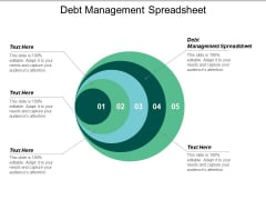 Debt Management Spreadsheet Ppt PowerPoint Presentation Pictures Portfolio Cpb
