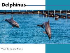 Delphinus Sea Water Ocean Water Ppt PowerPoint Presentation Complete Deck