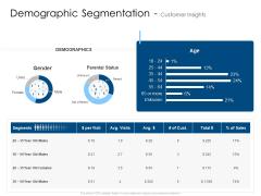 Demographic Segmentation Customer Insights Age Pictures PDF