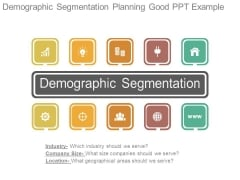 Demographic Segmentation Planning Good Ppt Example