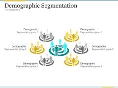 Demographic Segmentation Ppt PowerPoint Presentation Show