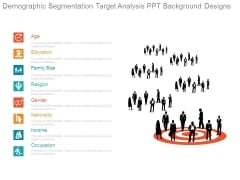 Demographic Segmentation Target Analysis Ppt Background Designs