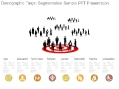 Demographic Target Segmentation Sample Ppt Presentation