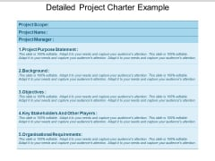 Detailed Project Charter Example Ppt PowerPoint Presentation Inspiration Outline