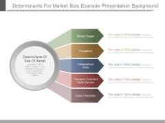 Determinants For Market Size Example Presentation Background