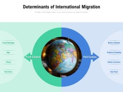 Determinants Of International Migration Ppt PowerPoint Presentation File Clipart Images