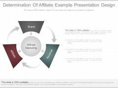 Determination Of Affiliate Example Presentation Design