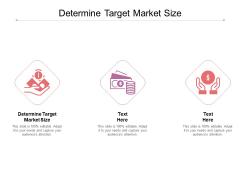Determine Target Market Size Ppt PowerPoint Presentation Slides Rules Cpb