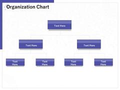 Determining Internalization Externalization Vendors Organization Chart Ppt File Deck PDF