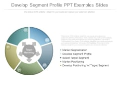 Develop Segment Profile Ppt Examples Slides