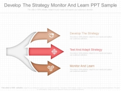 Develop The Strategy Monitor And Learn Ppt Sample