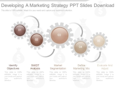 Developing A Marketing Strategy Ppt Slides Download
