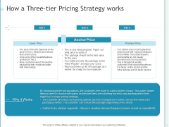 Developing A Right For Business How A Three Tier Pricing Strategy Works Information PDF
