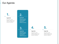 Developing A Right Pricing Strategy For Business Our Agenda Ppt Layouts Icons PDF