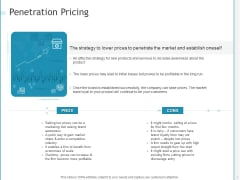 Developing A Right Strategy For Business Penetration Pricing Ppt Professional Styles PDF