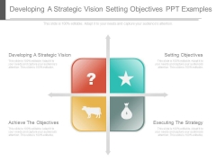 Developing A Strategic Vision Setting Objectives Ppt Examples