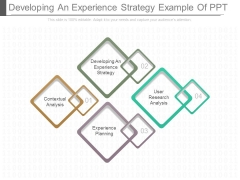 Developing An Experience Strategy Example Of Ppt
