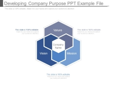 Developing Company Purpose Ppt Example File
