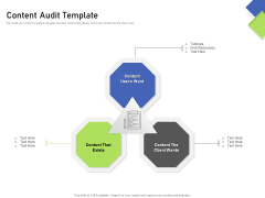 Developing Content Mapping Strategy Content Audit Template Ppt Outline Pictures PDF