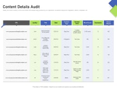 Developing Content Mapping Strategy Content Details Audit Ppt Summary Rules PDF