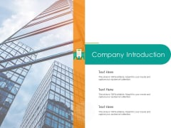 Developing Customer Service Strategy Company Introduction Ppt Professional Shapes PDF