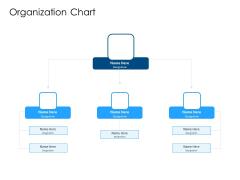 Developing Implementing Organization Marketing Promotional Strategies Organization Chart Microsoft PDF