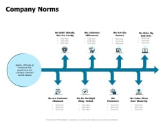 Developing Implementing Strategic HRM Plans Company Norms Ppt Infographic Template Information PDF