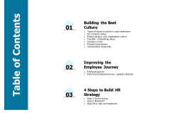 Developing Implementing Strategic HRM Plans Table Of Contents Ppt Outline Example File PDF