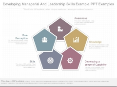 Developing Managerial And Leadership Skills Example Ppt Examples