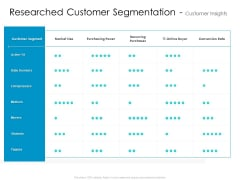 Developing New Sales And Marketing Strategic Approach Researched Customer Segmentation And Customer Insights Portrait