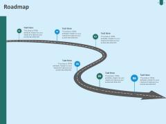 Developing Organization Partner Strategy Roadmap Ppt Portfolio Inspiration PDF