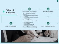 Developing Organization Partner Strategy Table Of Contents Ppt Model Vector PDF