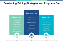 Developing Pricing Strategies And Programs Marketing Ppt PowerPoint Presentation Model Layout Ideas