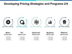 Developing Pricing Strategies And Programs Planning Ppt PowerPoint Presentation Infographics Portrait