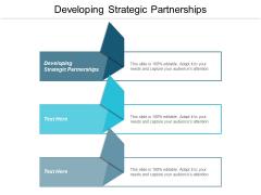 Developing Strategic Partnerships Ppt PowerPoint Presentation Model Slide Portrait Cpb