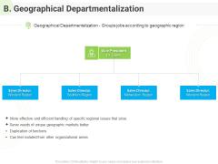 Developing Work Force Management Plan Model B Geographical Departmentalization Formats PDF