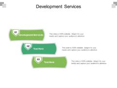 Development Services Ppt PowerPoint Presentation Portfolio Example Topics Cpb Pdf
