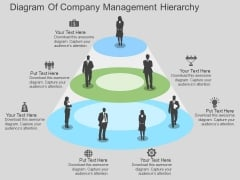 Diagram Of Company Management Hierarchy Powerpoint Template